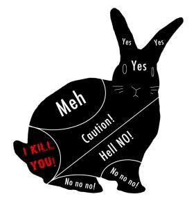 rabbitramblings.com